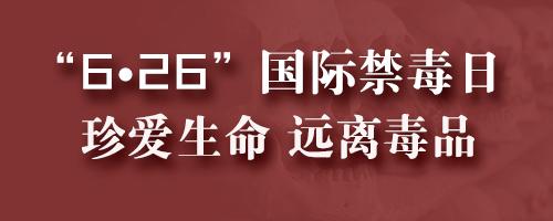 """""""6·26""""国际禁毒日专题"""